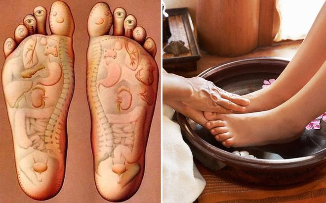 Ngâm chân bằng lá lốt giúp đả thông hệ bạch huyết, cải thiện dây thần kinh tọa